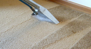 How to Clean a Carpet?