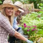10 Spring Gardening Tips