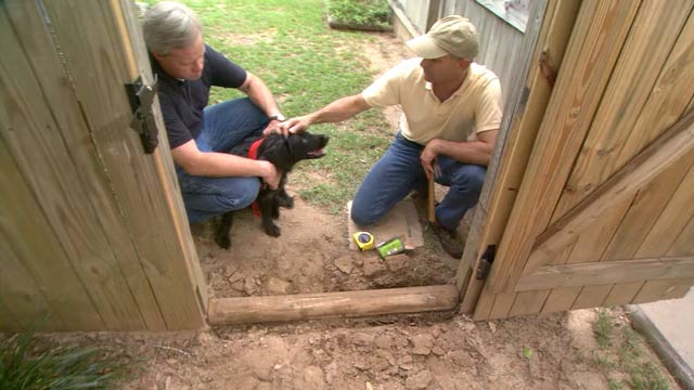 Tips For Fitting Fencing Posts Home Improvement Best Ideas