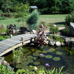 Maintain Your Pond and Garden with Helpful and Effective Tools